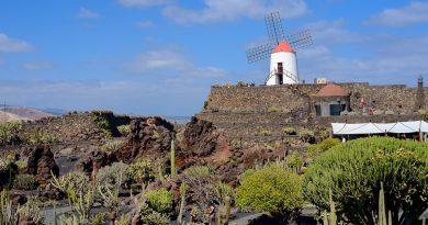 Le moulin à vent du Jardin de Cactus, Lanzarote (Guatiza) le 22/03/2018.