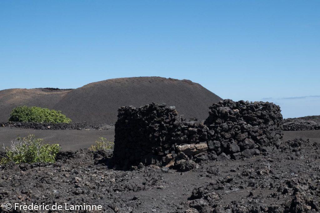 Cette construction de pierre qui se trouve dans le parc national de Timanfya est un séchoir à figues.