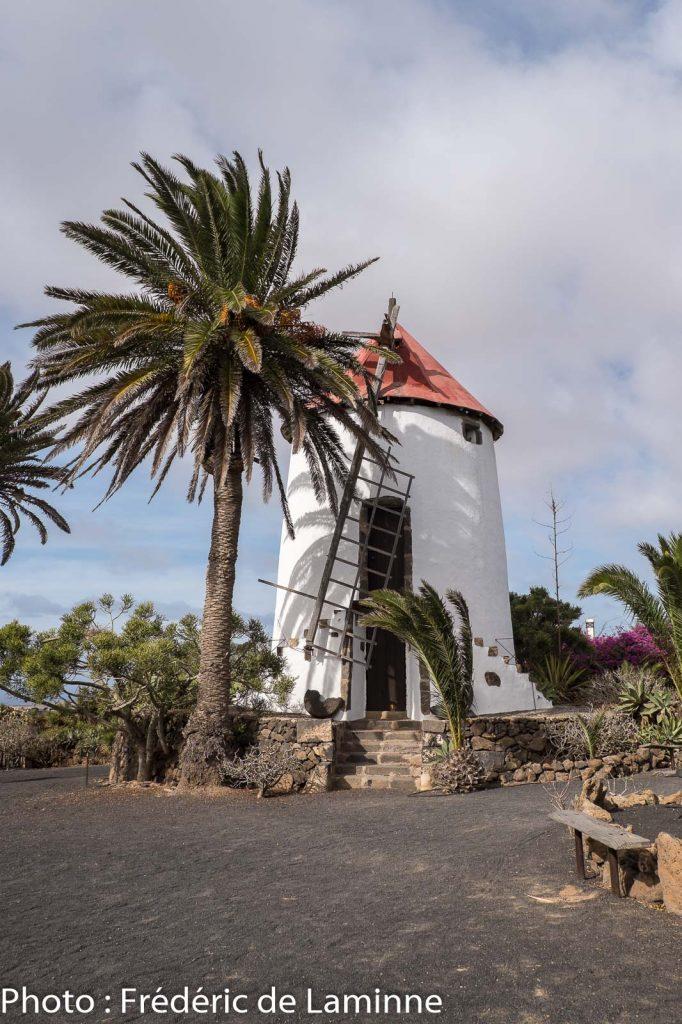 Un ancien moulin à vent au musée Agricole El Patio (Tiagua) sur l'île de Lanzarote, Canaries le 13/11/2019. Photo : Frédéric de Laminne