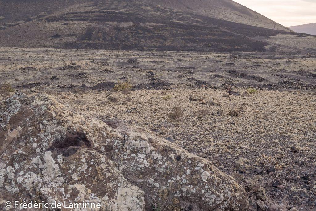 Les lichens vus depuis le chemin de la balade autour de la Montana Colorada