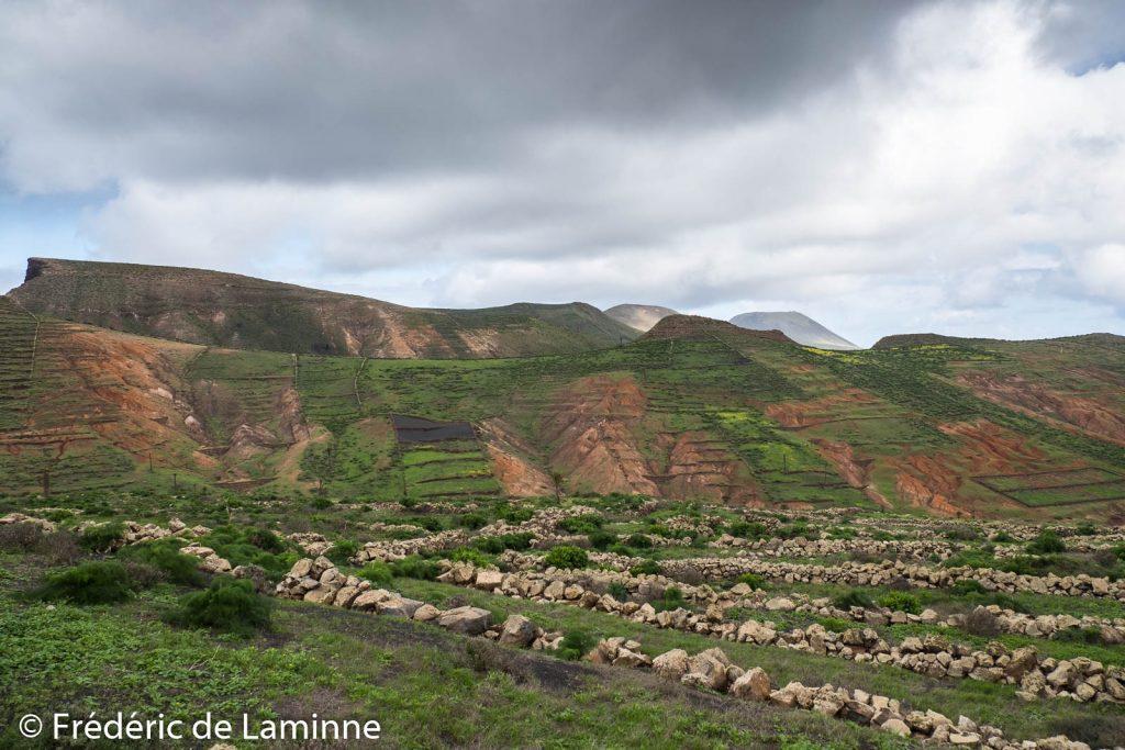 Collines sur les hauteurs d'Haria, Lanzarote